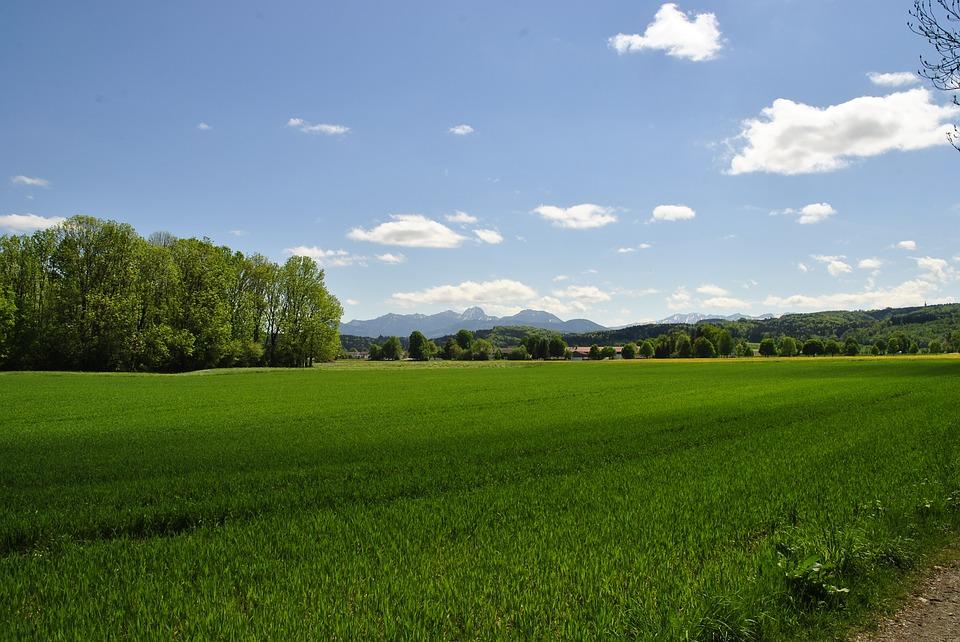 Jak przekształcić działkę rolną w budowlaną?