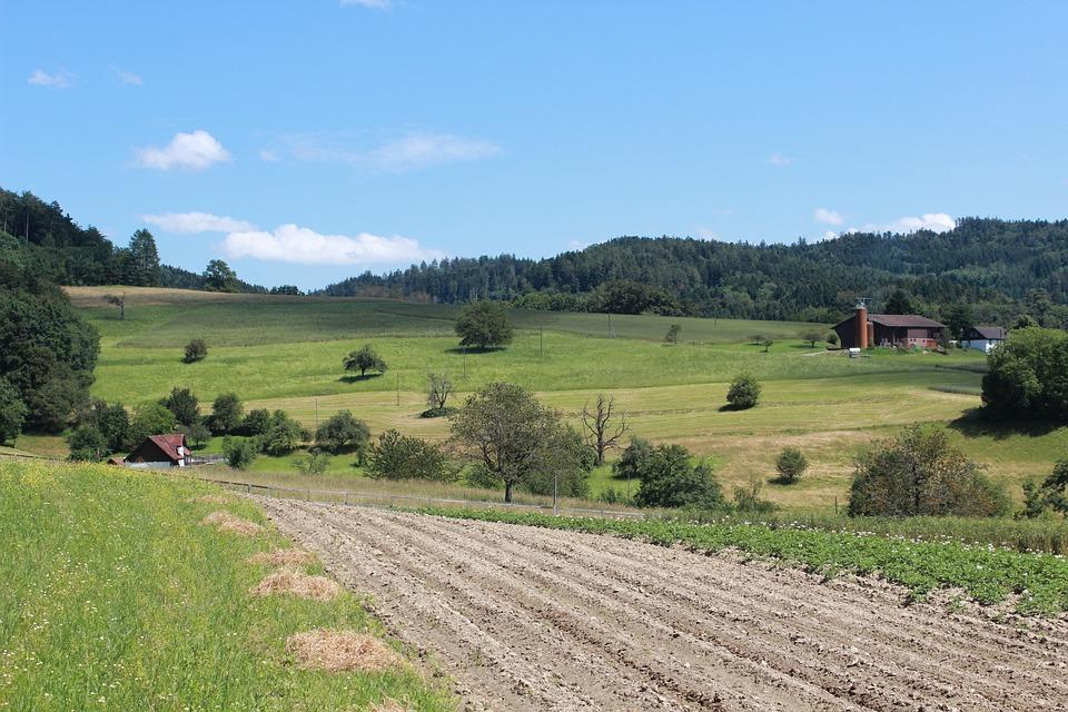 Warunki opłacalności małych gospodarstw rolnych