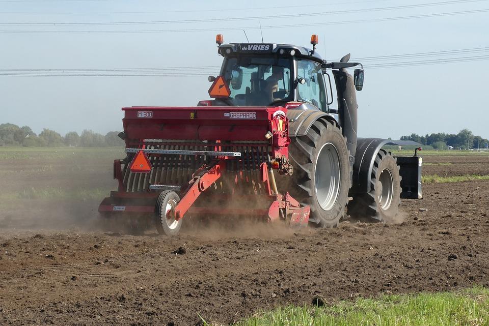 Rolnictwo w 2019 roku – Polska i świat