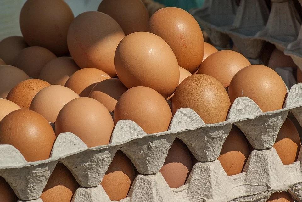 Ukraińskie jaja zdobywają singapurski rynek detaliczny